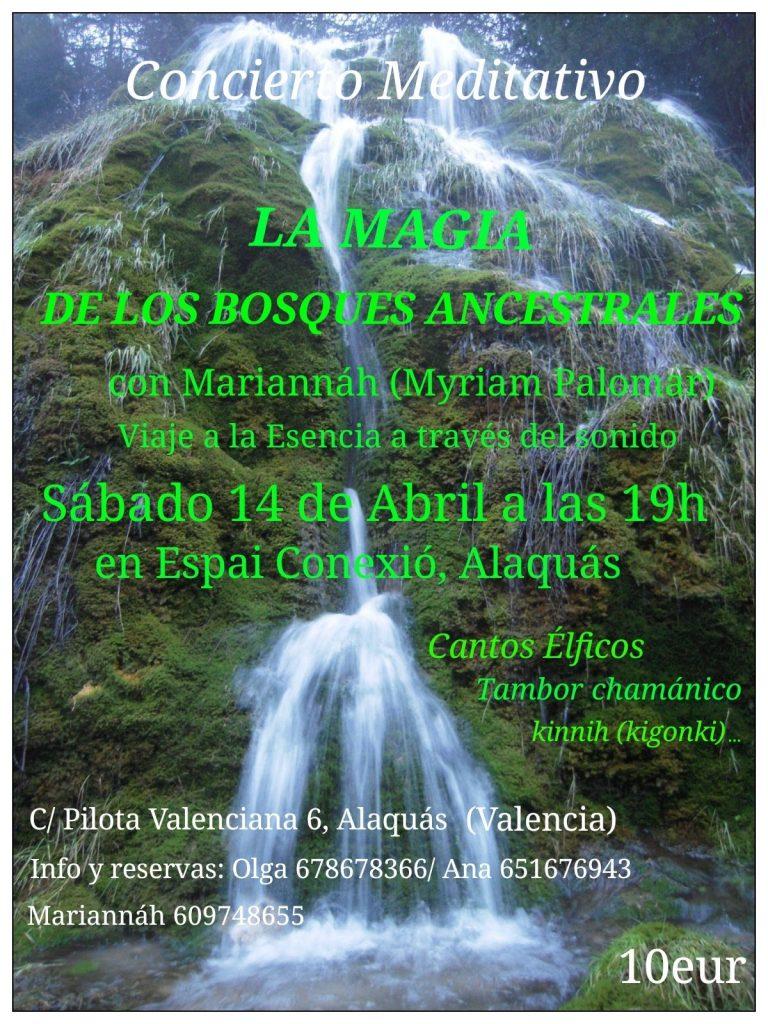 CONCIERTO MEDITATIVO «La Magia de los Bosques Ancestrales» 14 abril